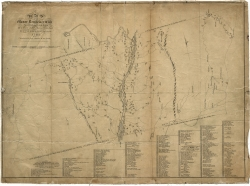 A Map of the Manor Renselaerwick, 1767