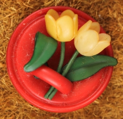 Yellow tulips on red single button