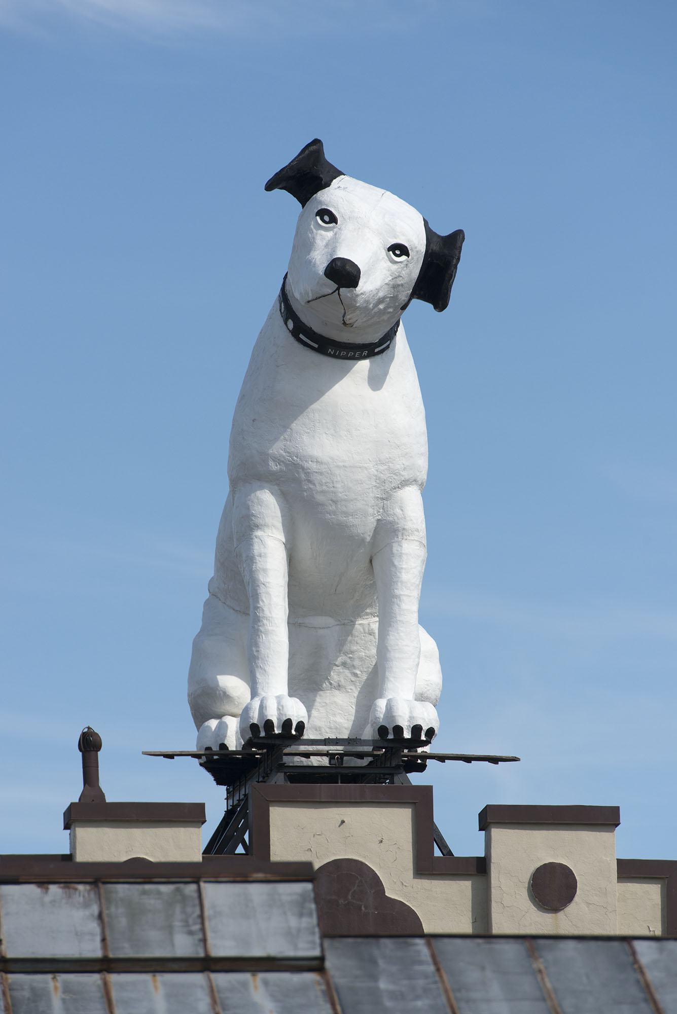 Nipper Albany Institute Of History And Art